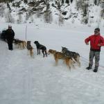 I cani da slitta con i loro educatori, Roberta e Tiziano