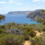 Cape Borda view