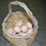 Paniere di uova...
