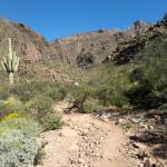 Trail behind the Best Western - Superstition Wilderness