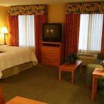 Photo of Hampton Inn & Suites Lathrop