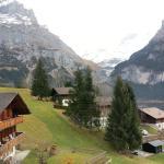 Foto de Hotel Alpenhof Grindelwald