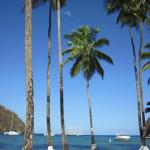 Photo of Oasis Marigot