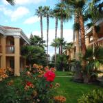 Photo of Best Western Palm Court Inn