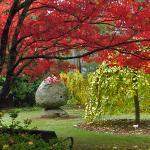 George Tindale Memorial Gardens