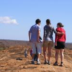 Nemm Tours and Safaris - Day Tours
