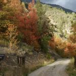 Swan Valley Idaho: Palisades Creek a short drive from Sleepy J