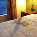 Bird on the bed
