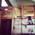 Walden Twin Bed Loft
