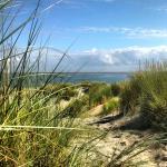 Neem een verfrissende duik in de Noordzee