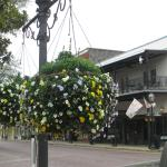 Hanging baskets line the street