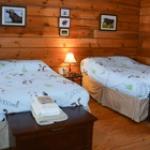 Maya's Cabin