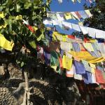 Near tibetan shrine