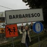 Barbaresco - the brother of king's wine