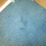 pet stains on carpet in front of door