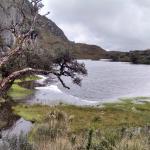 El Cajas National Park (Parque Nacional Cajas)