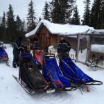Loading up the sleds