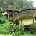 Nice bungalows