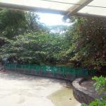 Foto de Cahuita National Park Hotel