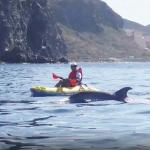 Tenerife snorkelling and kayaking
