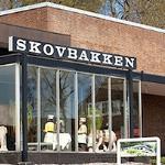 Photo of Skovbakken