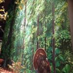 Amazing hand painted canvas backdrops