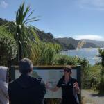 Stewart Island Experience Tour