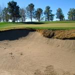 Numerous Tom Fazio bunkers.....not the best sand but playable