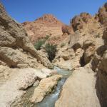 Sahel Voyages - Day Tours