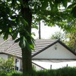 Midwood Lodge and Cottage from garden