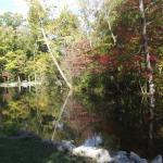 Along Mallard Lake in the Fall