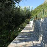 Explore Skadar Lake - Agritourism and Multi-Activity Holidays Picture