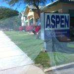 Photo of Aspen in the Desert