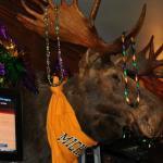Moose that hangs behind the bar.