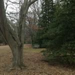Photo de Tyler Arboretum