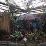 Greenland Garden's Indoor Garden