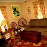 Living Room in Wildflower