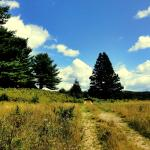 22 acres en nature