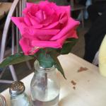 Beautiful rose on the table!
