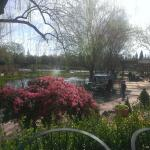 Coffee Shop patio dining, pond view