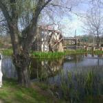 Pond and Water Wheel, behind Garden Shop
