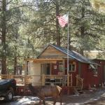 The general store where the elk also visit