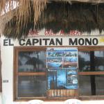El Capitan Mono