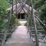 ponte di bamboo