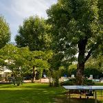 jardin piscine