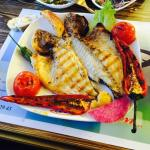 Economic Fish - Meat Restaurant