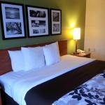 Sleep Inn Hotel - Lansing Foto