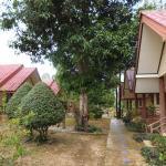 Wonderful Resort Foto