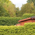 lodges private in woodland setting