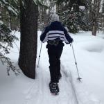 White Pine Lodge Foto